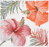 BL1169/76 Watercolor Hibiscus (DMC)
